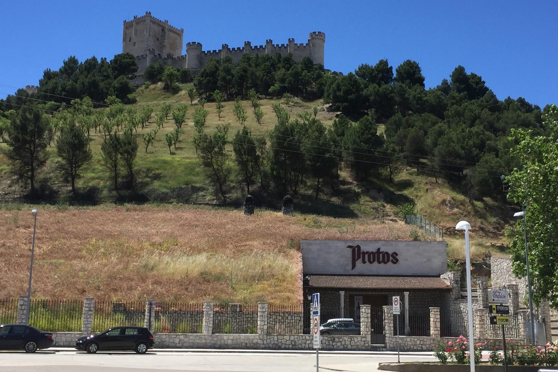 Ribera de Duero Penafiel castle & Protos winery