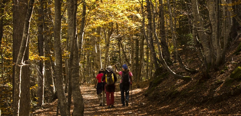 Spanish Pyrenees walking holiday